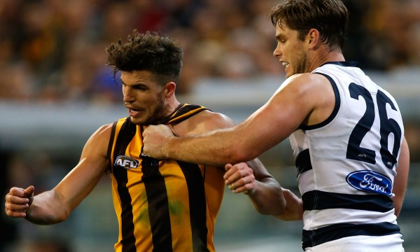 Jumper punch geelong hawthorn